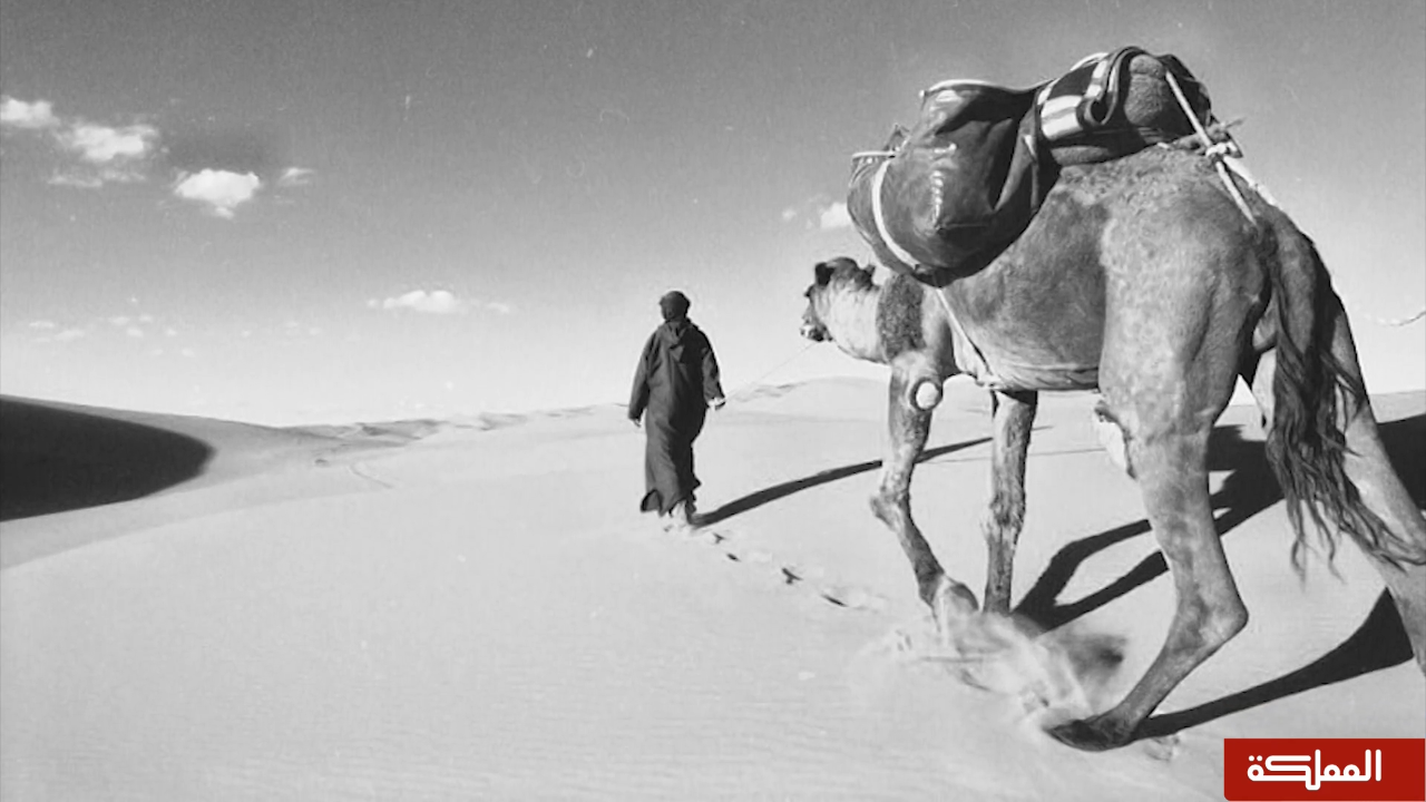 وثائقي | عيون الرحالة .. رحلة سيلاه ميرل للأردن وفلسطين