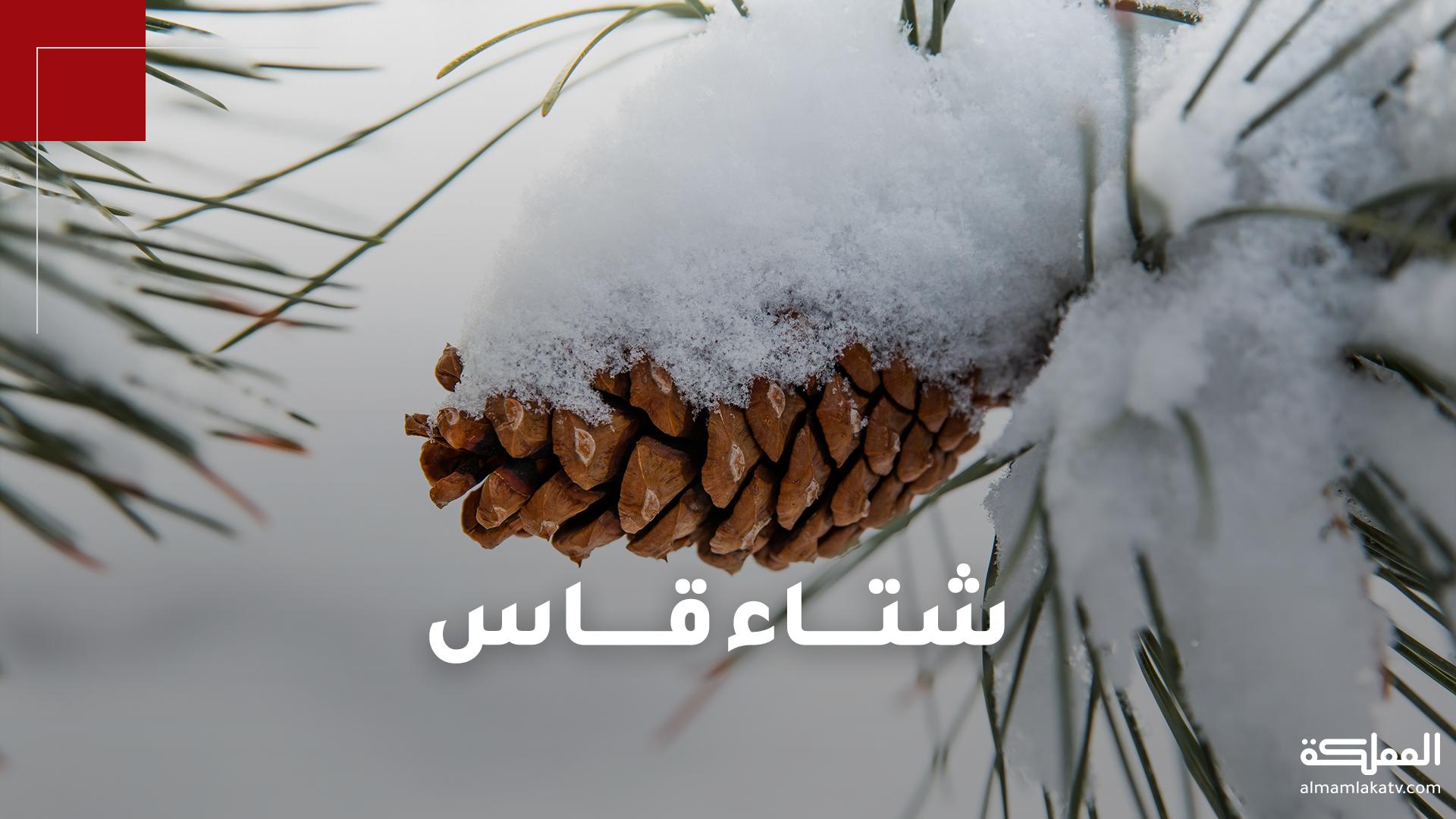 """الأردن بانتظار شتاء قاسٍ بحسب توقعات """"طقس العرب"""""""